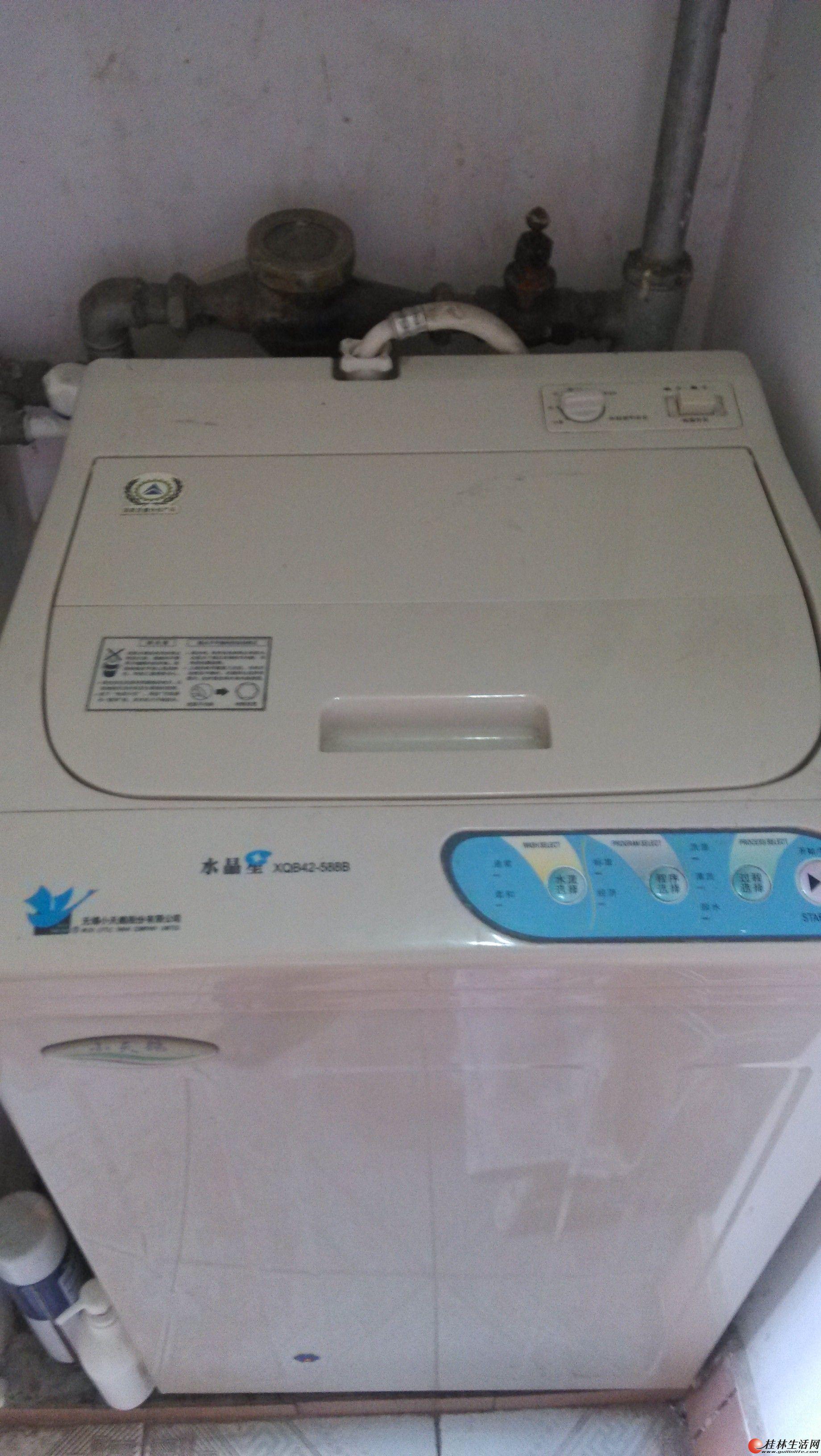 自用小天鹅全自动洗衣机