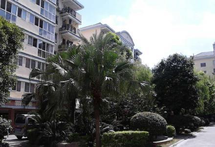 丰泽园 中装4房2厅2卫168㎡出租,办公最佳选择