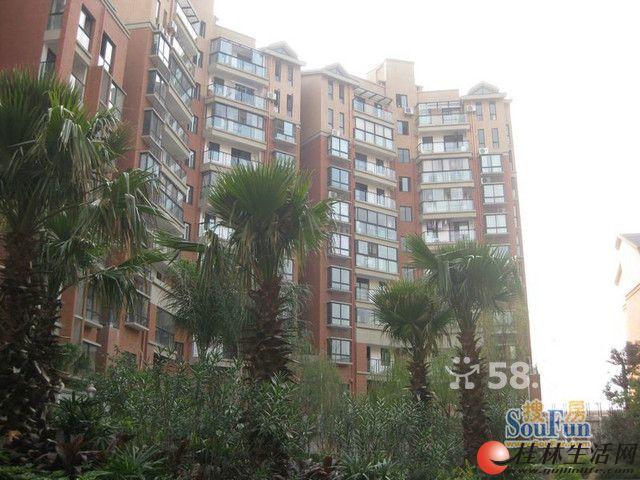 广源国际高档小区4/11层 新房精装修,一房一厅1卫1阳台60平米