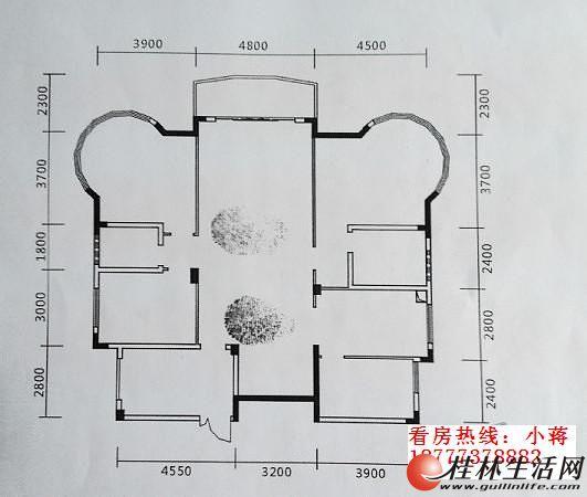 250平房屋设计图