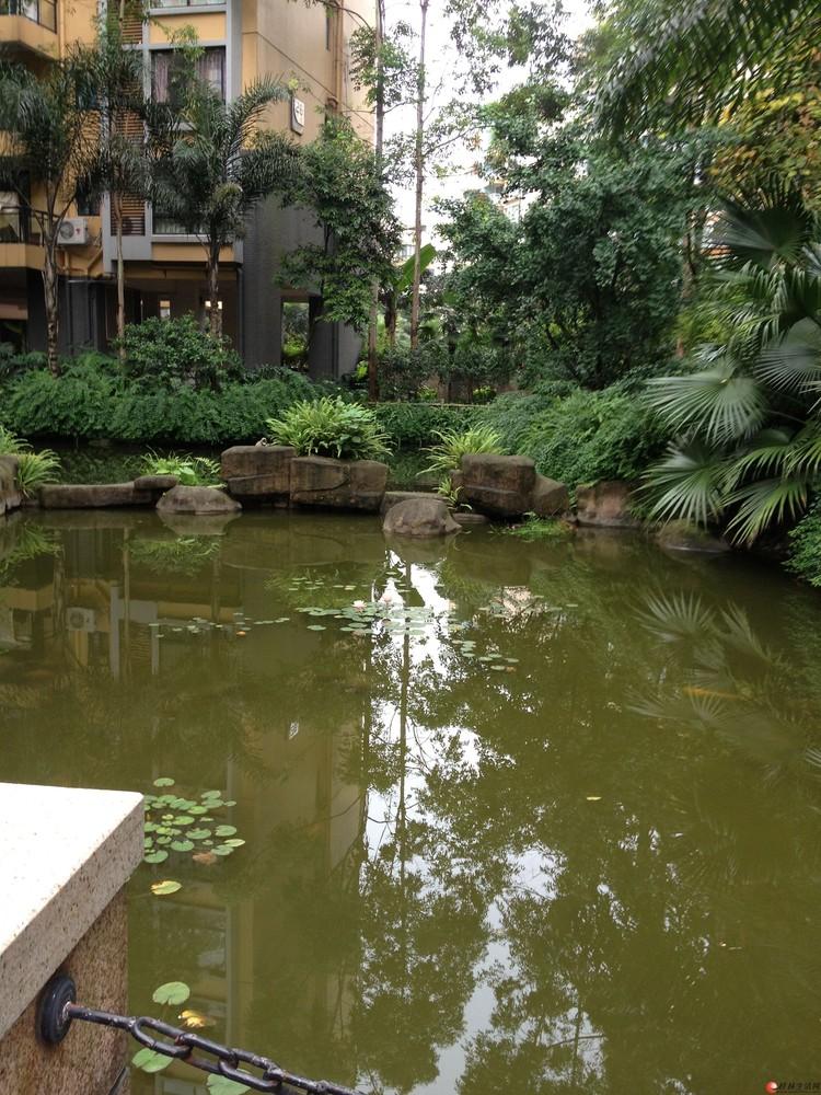 花园式小区 鸣翠新城 实用2房 家具家电齐全!