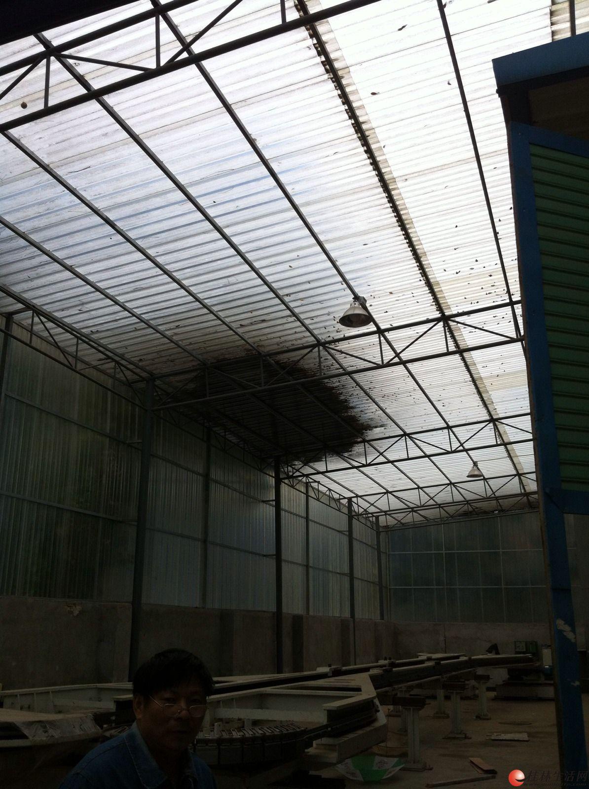 专业制作钢架结构楼面雨棚,停车棚,彩钢瓦厂房及仓库