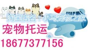 广西桂林始发宠物托运
