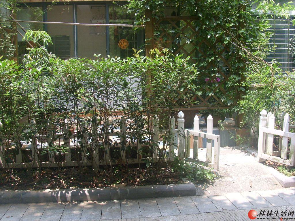 高档小区,绿涛湾小区,一楼送60平米花园,豪华装修,绝对的拎