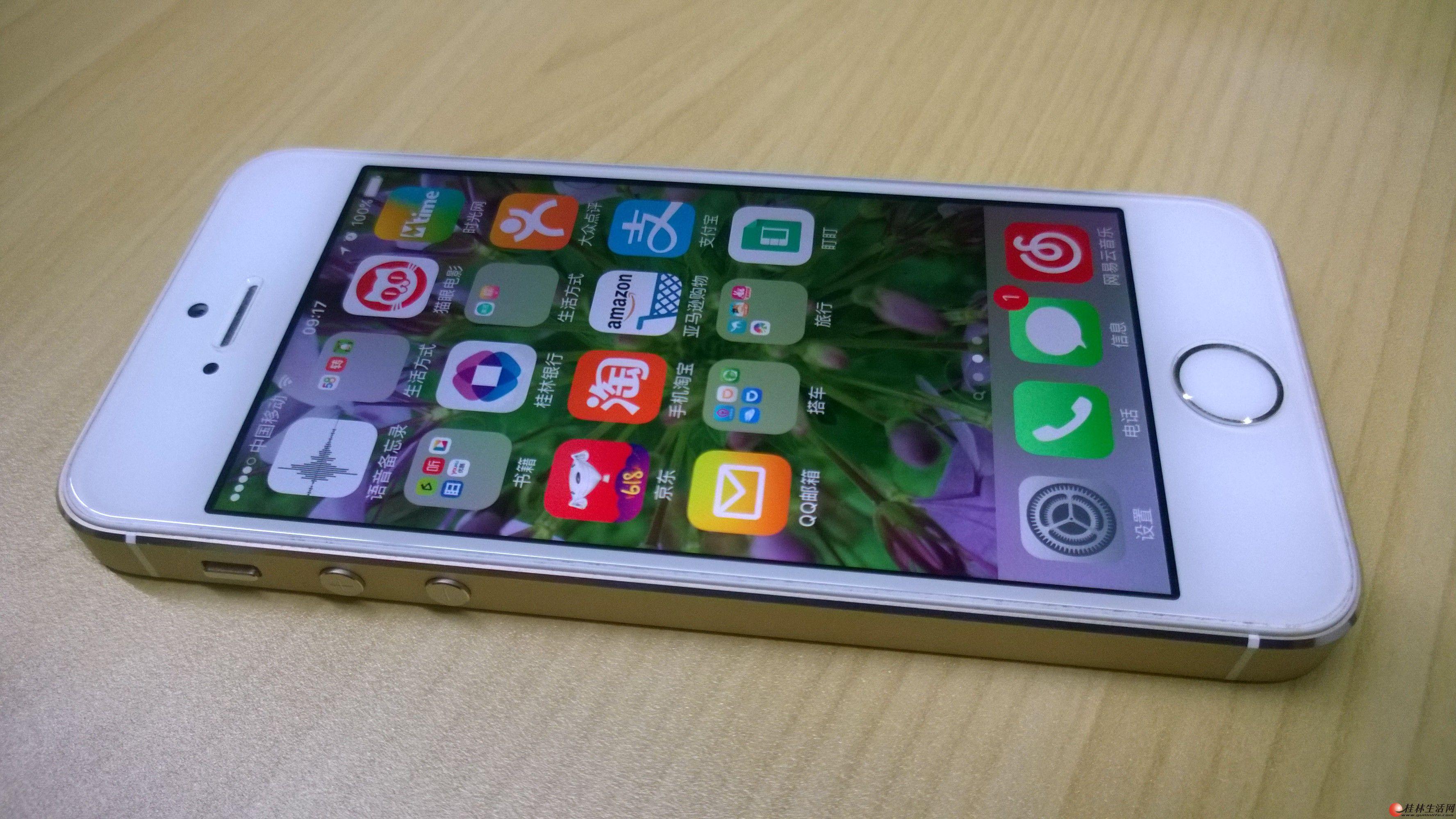 日版iPhone5s 64g超大存储 土豪金