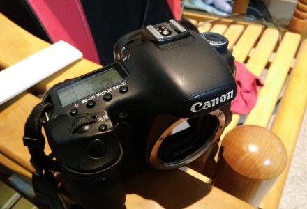 自用佳能7d专业数码相机低价转让
