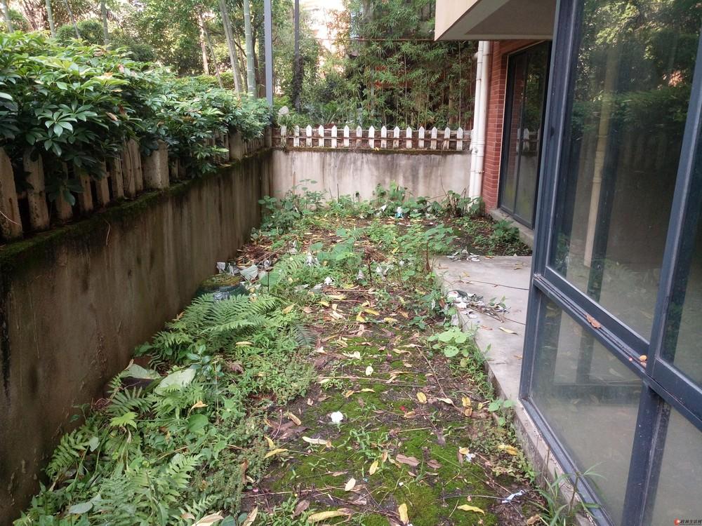 彰泰【澳洲假日】清水一楼复式5房带花园带车库花园120万