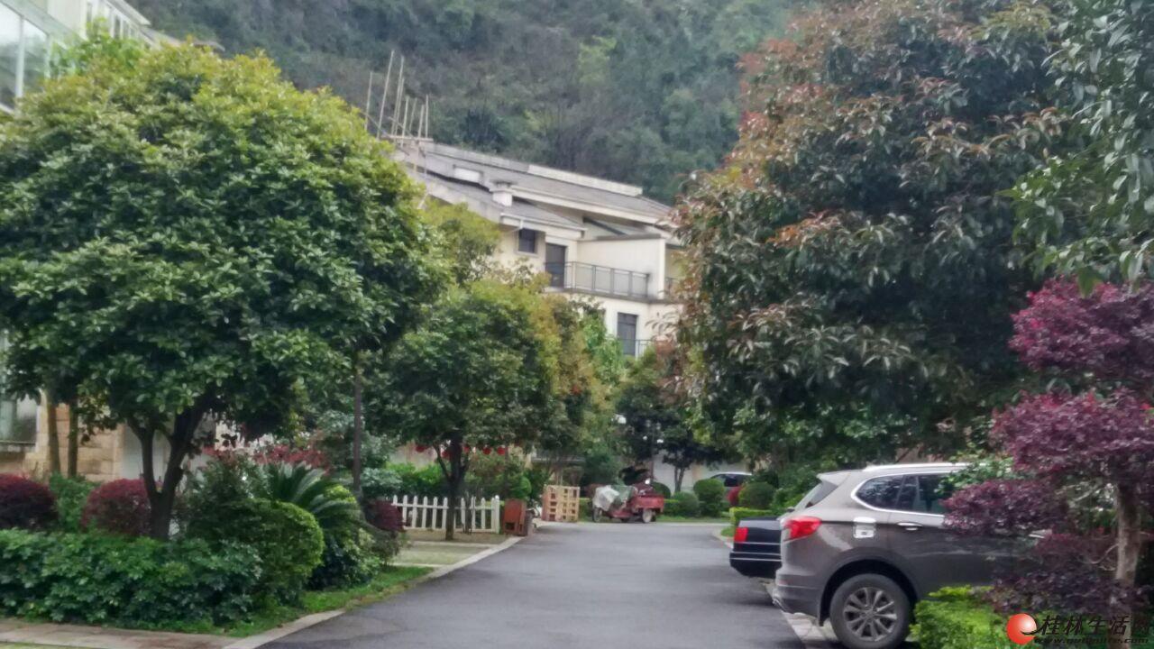 【别墅】清秀庭院靠山别墅338平米清水带超大院子可以停2部车