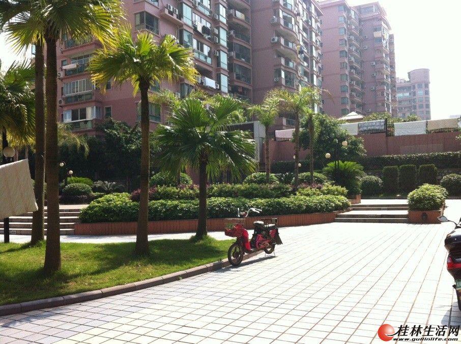中院宿舍,5房2厅2卫180平米,3楼3000元/月,家具齐全,拎包入住!适合办公,住家有