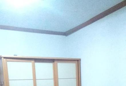神舟花园南区2室1厅,男女不限