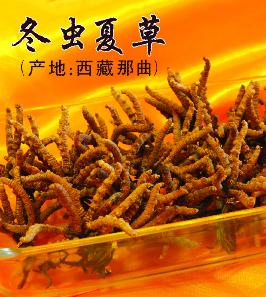 桂林上门收虫草13611114534桂林回收冬虫夏草礼品