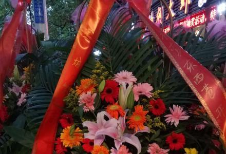 绿色家园花卉开业花篮鲜花盆景批发