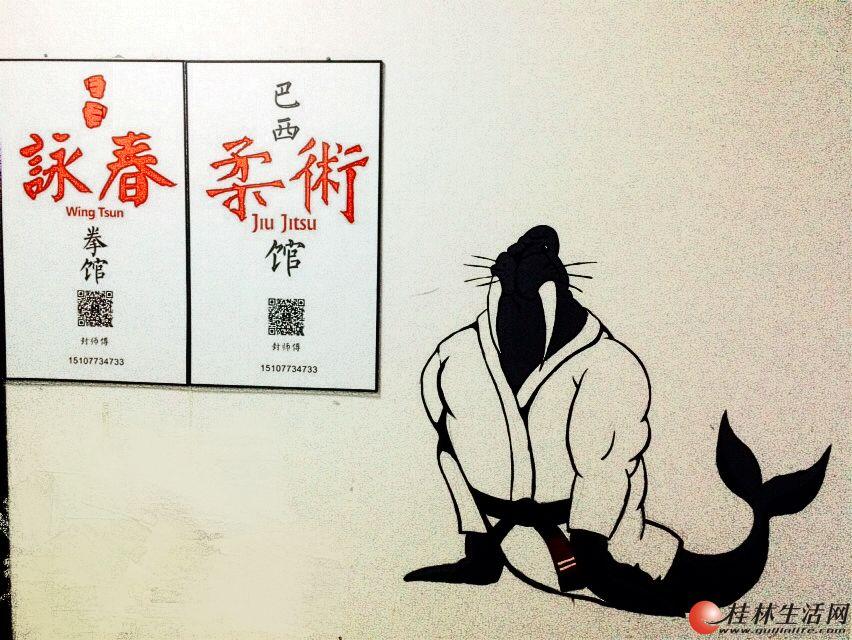 禅心巴西柔术咏春拳馆暑期班开始了