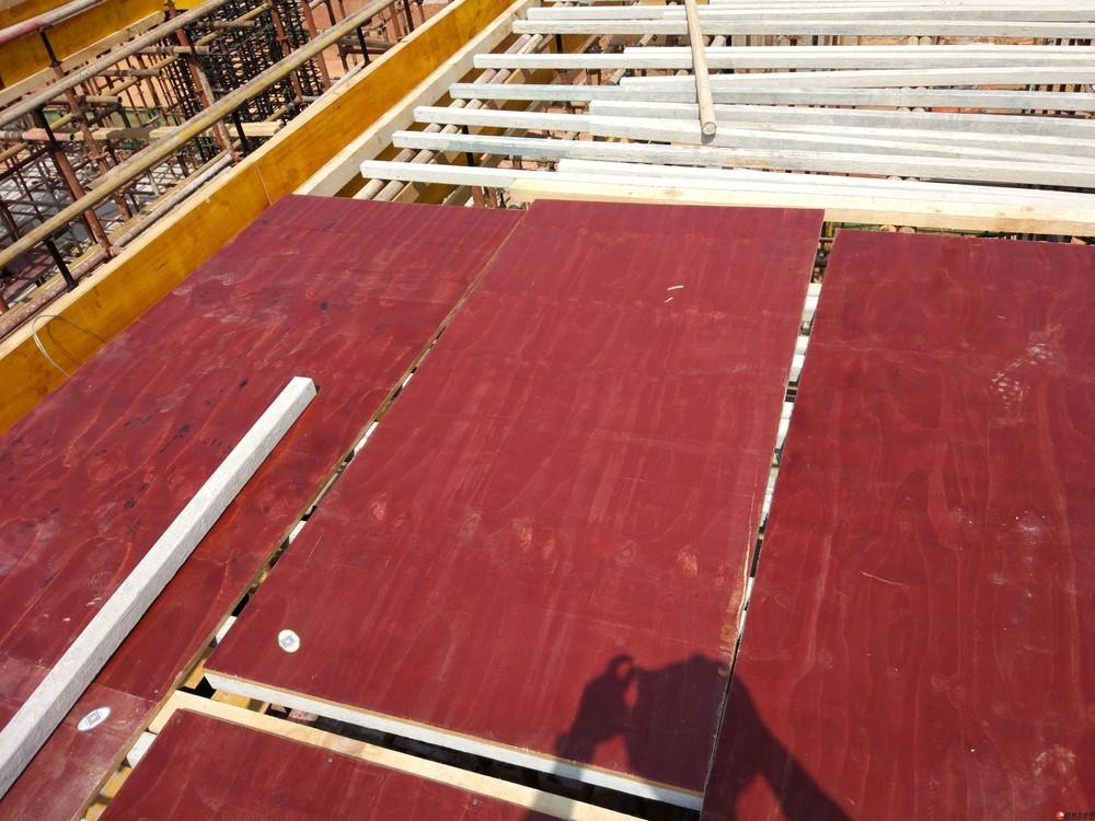 建筑模板、胶合板的分类