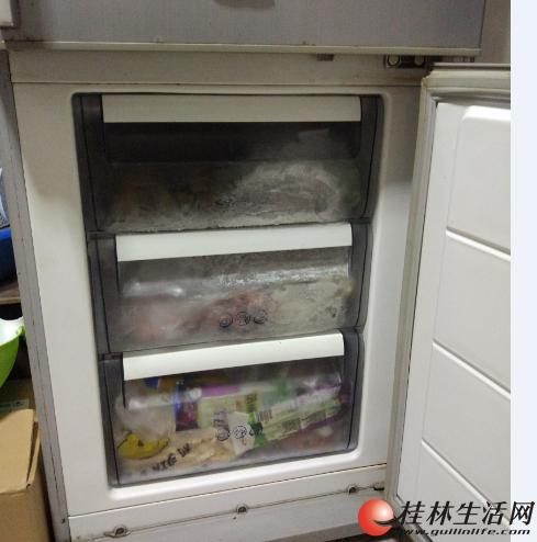 lg-210升双门冰箱