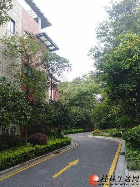 R【 龙隐小区】桂林 会仙路万灵润园 豪宅别墅养生,世外桃源的好地方。