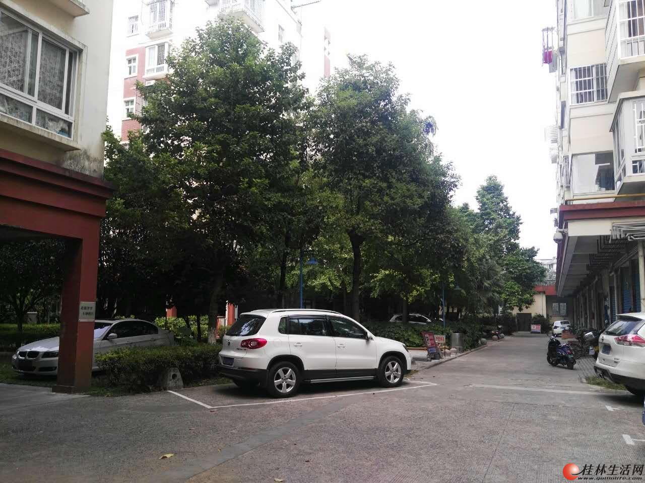 市中心稚山路新洲花园3房2厅精装出售75万