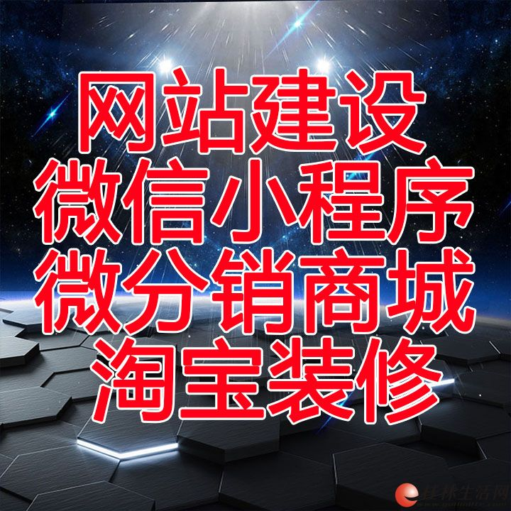 高端网站建设 做网站 小程序开发 网站设计 APP开发 微信 平台开发游戏运营。百度