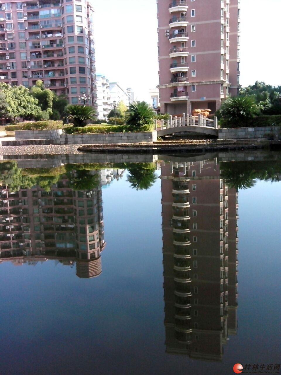 出租,世纪新城,3房2厅2卫,145平米,电梯8楼,2500元/月,精装修