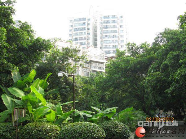 龙隐学区鑫海国际,2房2厅1卫,91平米,黄金3楼,78万