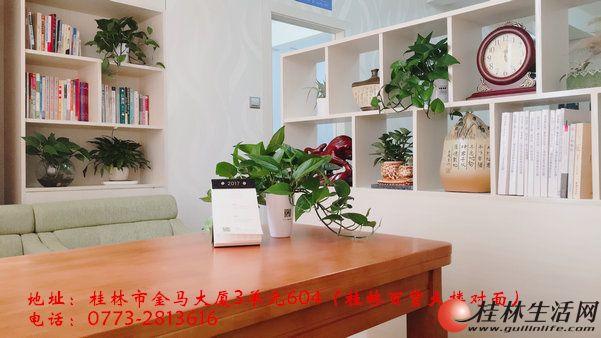 桂林中高考心理咨询,就找桂林和谐心理教育培训学校