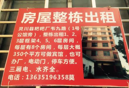自建房出租有电梯、货梯、可开宾馆、办厂、办公等