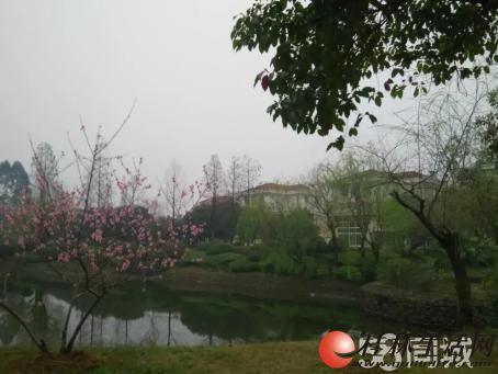 A.临桂麒麟湾湖景大别墅占地近900平米产权480平方售价620万价可谈!