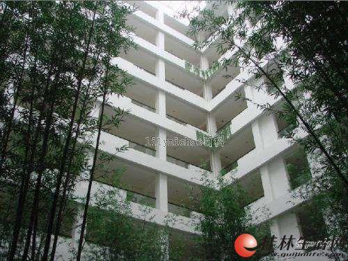 房东出租安新洲港湾一号电梯房1房1厅