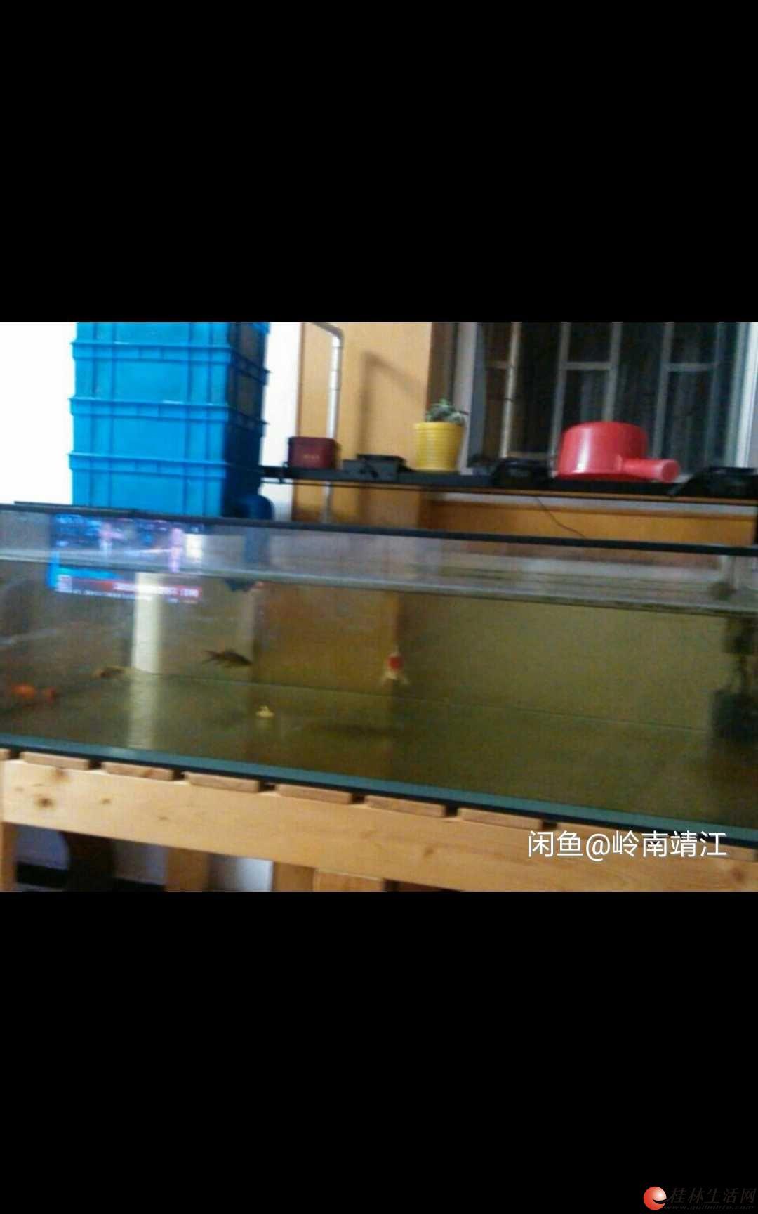 金晶超白缸 鱼缸 长115厘米 宽70厘米 高32厘米