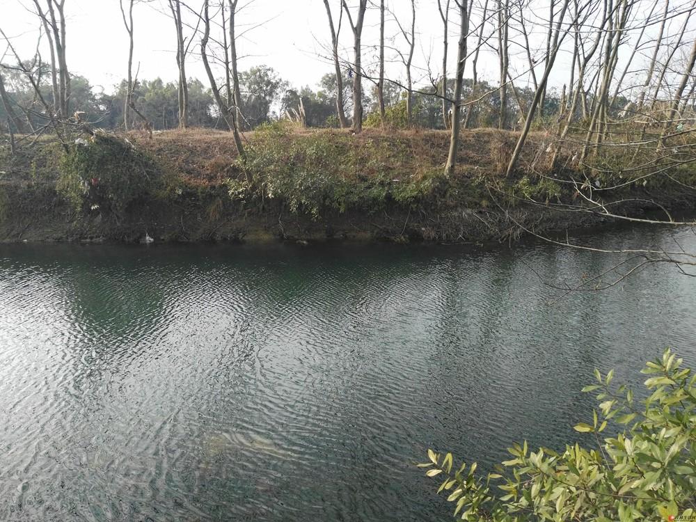 桂林市附近漓江边30亩土地出租