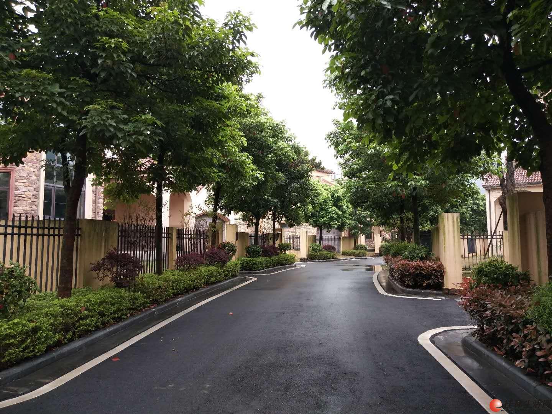 君临山水独栋别墅占地600多平绿化百分之70超好地段