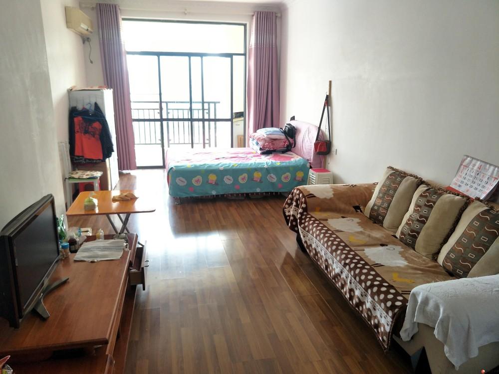 临桂山水凤凰城45平G42栋12楼一房一厅精装