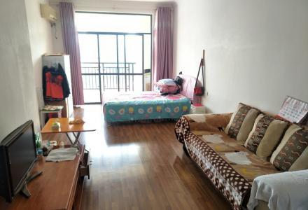 临桂山水凤凰城45平G42栋12楼一房一厅精装900元