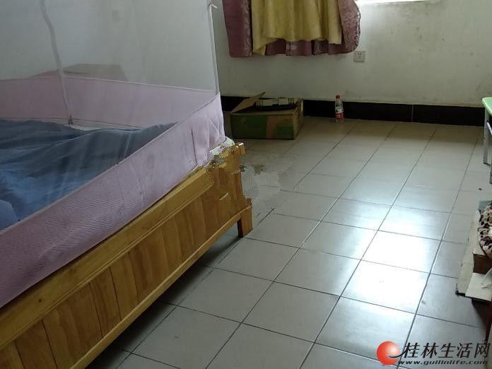 0七星区 甲天下广场对面 地矿院宿舍 2室1厅1卫 中装 70平米 900元