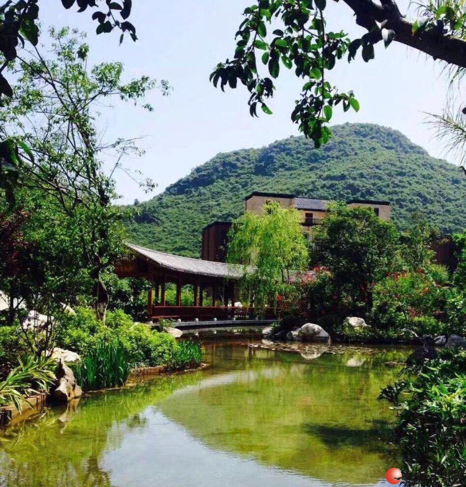 东方庭院东景园 现代中式园林 独栋别墅 1000平方超大花园