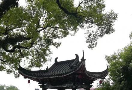 榕湖北路(古南门)旅游局宿舍新装一房二厅出租
