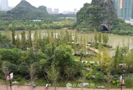 市政府对面临桂国奥小区5楼200平米清水房出租(含车位)