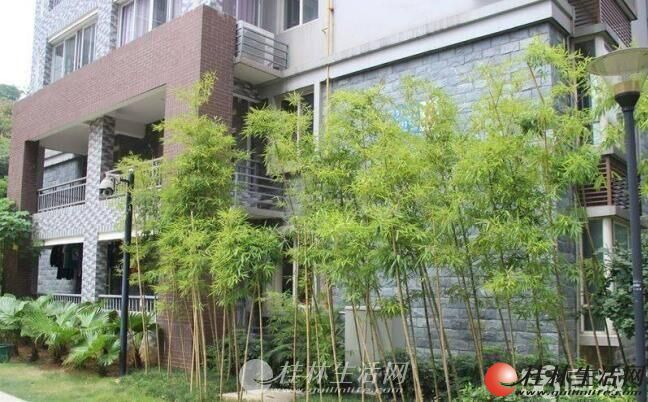 急售优质香江漫步100平米电梯3房2厅1卫仅售70万