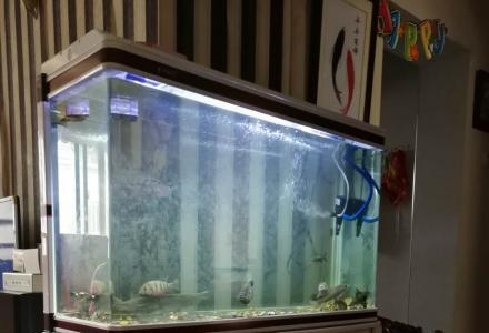 出售一个1米玻璃鱼缸带柜子