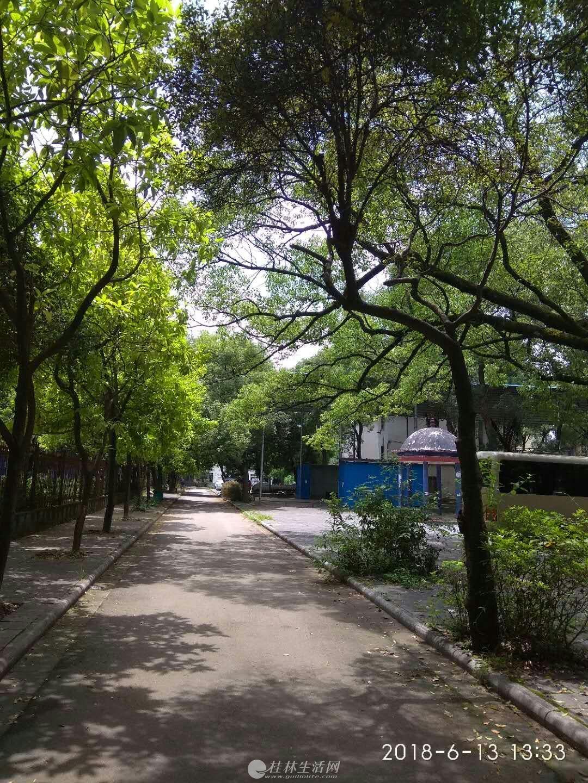 万福广场斜对面雪芙莲小区交通方便,环境优美,新装修,家电家具齐全,拎包入住