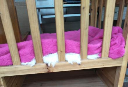 手工定做全木儿童储物床
