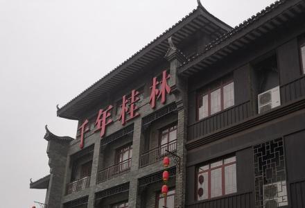 【千年桂林】 五星级文化旅游景区 做全球旅游生意 收益前景大 商铺总价10万起