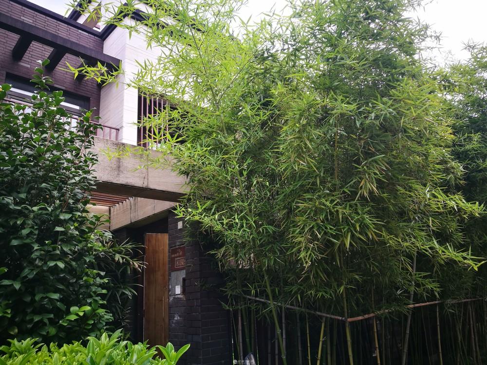原乡墅联排清水别墅产权223.4平米,带高赠送双车库、地下室、露台