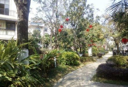 七星信昌穿山18号独栋别墅带私家游泳池大花园 小区仅此一套