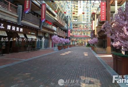 Z万达商铺黄金临街铺面 以前6万每㎡的门面现在只要3万每㎡。投资前景巨大