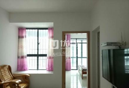Q金水湾1房1厅,豪华装修,家电齐全