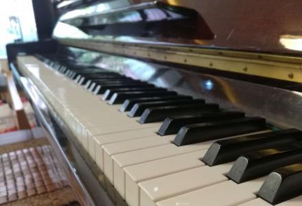 钢琴维修 钢琴调律 调琴