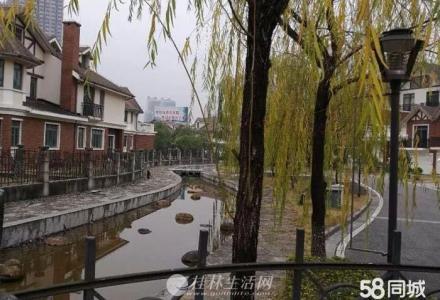 桂林北漓江上游别墅群!占地450平3层独栋别墅再降20万卖!