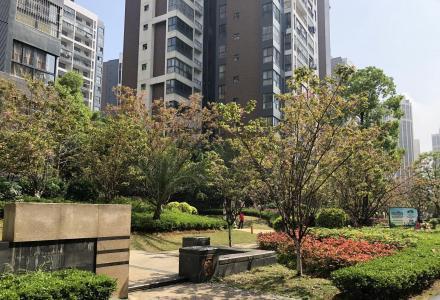 紧急 紧急碧园印象桂林 一手新房 4室变6室 三世同堂没问题