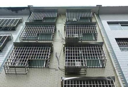 桂林周边其它桂林市荔浦县荔城镇篓 4室1厅1卫 365平米